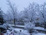nevicata 2012_3.jpg