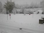 nevicata 2012_9.jpg